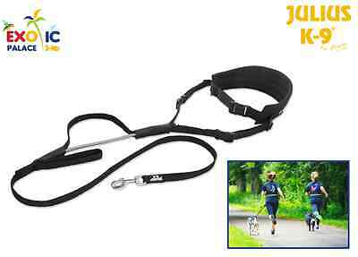 Julius-K9 Belt Jogging Trails For Dog Running Walking Race Trekking Leash