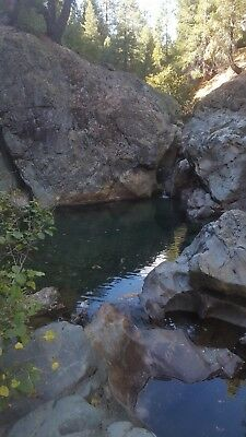 """the Rabbit Hole"" Camc#0319233 20 Acre Placer Gold Mining Claim Plumas County Ca"