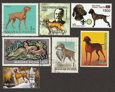 VIZSLA ** Int'l Dog Postage Stamp Collection ** Unique Gift **