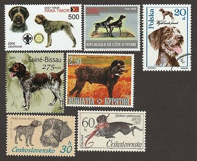 GERMAN WIREHARED POINTER **Int'l Dog Postage Stamp Collection**Great Gift Idea**
