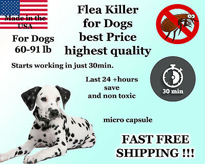 100 Capsules Instant Flea Killer Control Large Dogs 60-91lb 55mg FAST RESULTS!!