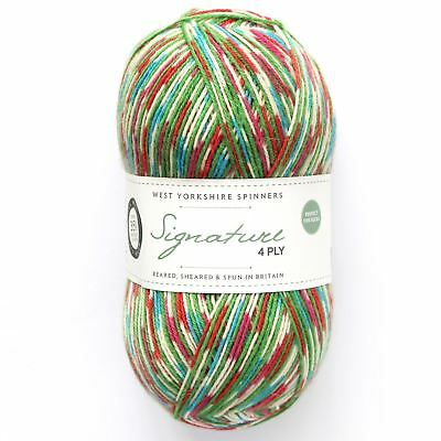 West Yorkshire Spinners WYS Signature 4Ply Yarn Wool 100g - Fairy Lights (849)