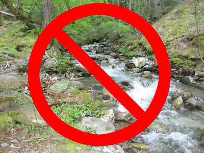WARNING! Brushy Junction California Placer Gold Mining Claim Forest & Alleghany