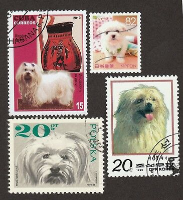 MALTESE ** Int'l Dog Stamp Collection **Unique Gift Idea**