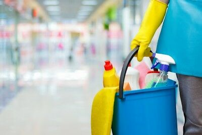 How to Start a Profitable Cleaning Business | Business guide for sale
