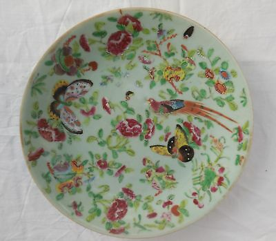 Antique Chinese Celadon Famille Rose 25.5cm Plate Signed