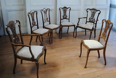 Wonderful Set 6 Antique Vintage Chippendale Style Cedar Dining Chairs  2 Carvers