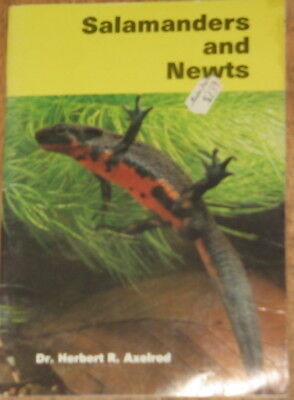Vintage Book Salamanders And Newts
