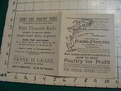 Early Original Frank H Grant ROCKVILLE CONN Poultry for Profit brochure EARLY