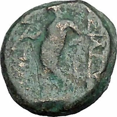 Antiochos III, Megas Authentic Rare Ancient Greek Coin APOLLO Cult  i49789