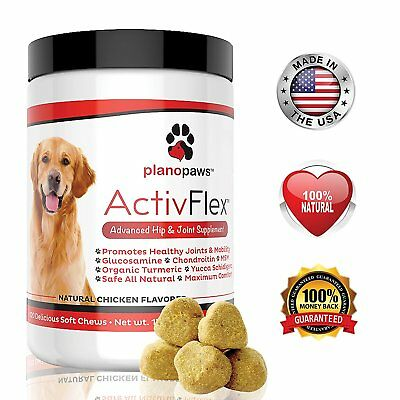 Advanced Hip And Joint Support - Glucosamine Chondroitin MSM For Senior Dogs New