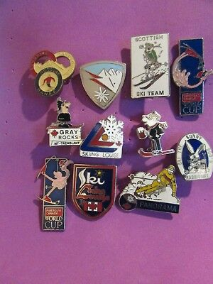 Collection Of Skiing Pins