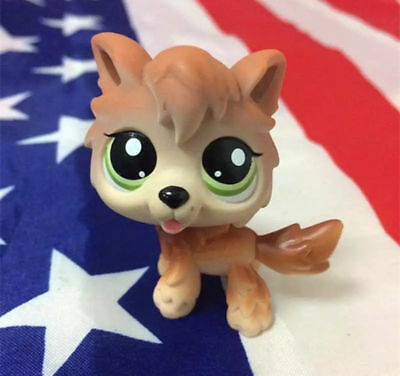 Littlest Pet Shop Figure Toy Brown Tan Timber Wolf  Dog Puppy with Green Eyes