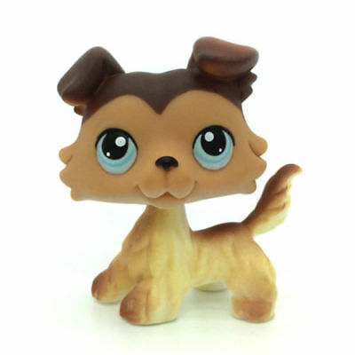 Littlest Pet Shop Figure Toy  Tan Brown Collie  Dog Puppy with Blue Eyes