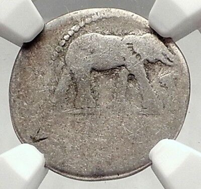 JULIUS CAESAR Authentic Ancient 49BC Silver Coin w ELEPHANT NGC Certified i72891