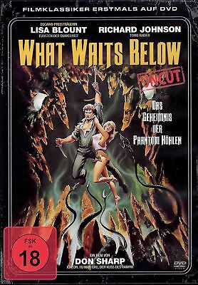What Waits Below | Uncut | Horror | Splatter | Don Sharp | Action [FSK18] DVD