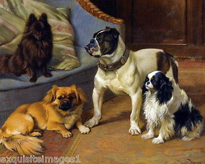 c1900~Barker~Schipperke~Pekingese~English Bulldog~Cavalier Dogs~NEW Note Cards