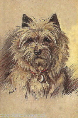 1930's Lucy Dawson~Cairn Terrier Dog Portrait~ NEW Large Note Cards