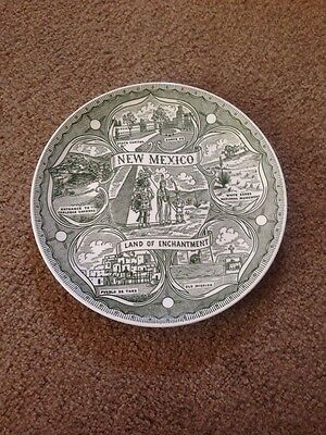 """9.5"""" Vintage Early 60's State Plate New Mexico NM Land Of Enchantment Carlsbad +"""