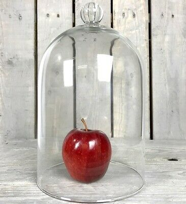 Large Mouth Blown Glass Display Cover Cloche Bell Jar Dome Centrepiece 30 cm