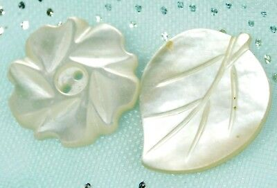 2 HEAVENLY Antique Vtg Mother of Pearl Shell Buttons REALISTIC Leaf & Flower C13