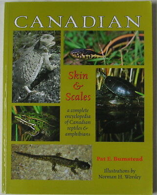 Canadian Skin & Scales   Encyclopedia Of Canadian Reptiles And Amphibians