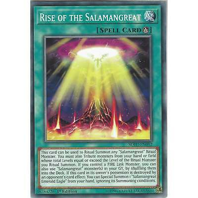 Yu-Gi-Oh! TCG: Rise of the Salamangreat - SOFU-EN052 - Common Card - 1st Edition