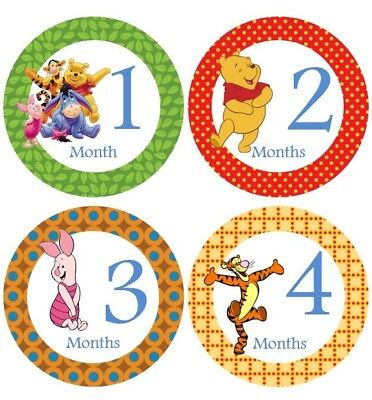 Monthly Baby Stickers Boy or Girl, Milestone Stickers, Winnie the Pooh #38