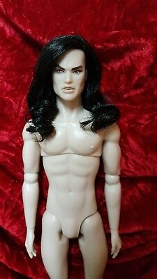 Brides of Count Dracula Fashion Royalty Male Homme integrity nude doll 2011