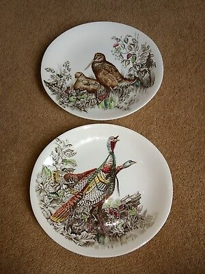 Set of 2 Oval shape Games Birds Dinner Plates By Johnson Brothers