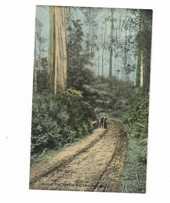 Australia Postcard, Along the Track MT TOOLE -BE- WONG   Vic