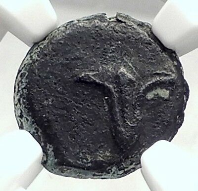JOHN HYRCANUS I w ANTIOCHOS VII Ancient Greek JERUSALEM Coin LILY NGC i72932