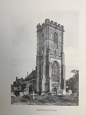 1904 Antique Print; Church of St Michael, Shepton Beauchamp, Somerset - Brereton
