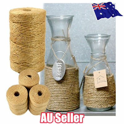 3Ply 100m Natural Brown Soft Jute Rope Twine Sisal String For Art Gift Bottle S4