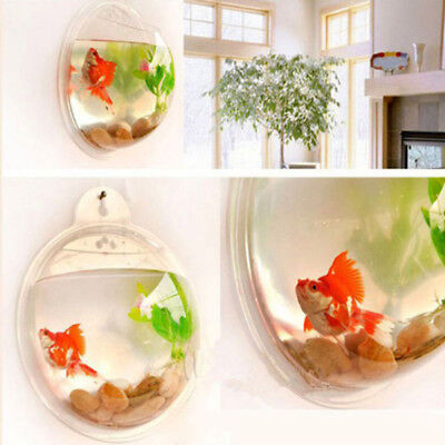 Home Mounted Hanging Bubble Bowl Plant Fish Tank Aquarium Glass Pot Wall Decor