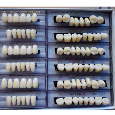 Hot Synthetic Polymer Resin Denture Teeth A3 Upper + Lower Dental Set #dj8