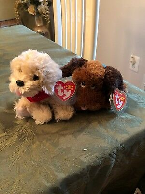 Ty Beanie Babies / **BISCUIT & GRAVY** the Evans exclusive Puppy Dogs -lot MWMT-