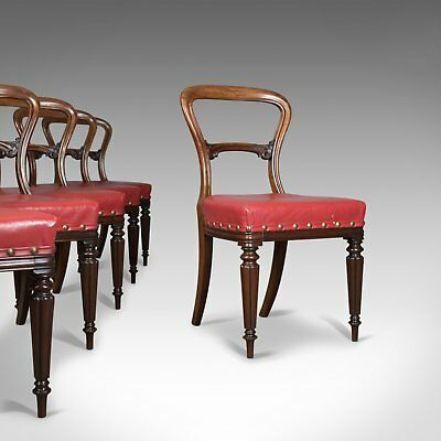 Set of Six Antique Dining Chairs, Leather, William IV, Buckle Back, Circa 1830