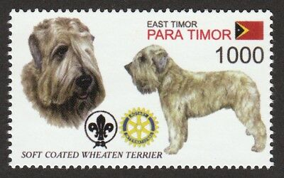 SOFT COATED WHEATEN TERRIER ** Int'l Dog Postage Stamp  ** Great Gift Idea **