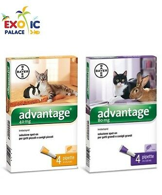 Bayer Advantage Pesticide Pour Chat Lapin Poudre Antipuces 4 Pipettes Spot On