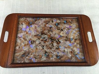Vintage Butterfly Wing Pattern Serving Tray