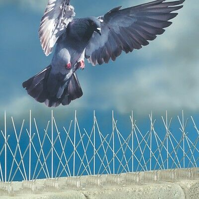 2.5M Plastic Anti Bird Anti Pigeon Spike for Get Rid of Pigeons and Scare Birds