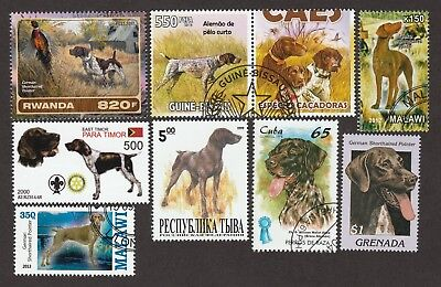 GERMAN SHORTHAIRED POINTER**Int'l Dog Postage Stamp Collection**Great Gift Idea*