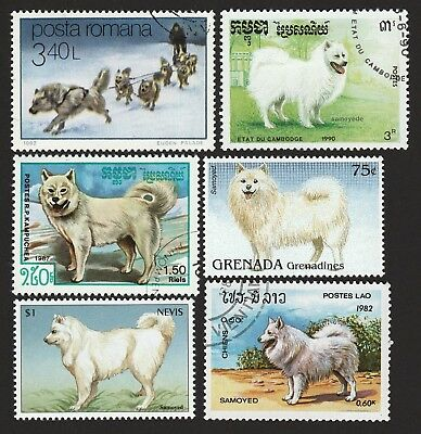 SAMOYED ** Int'l Dog Postage Stamps ** Unique Gift **