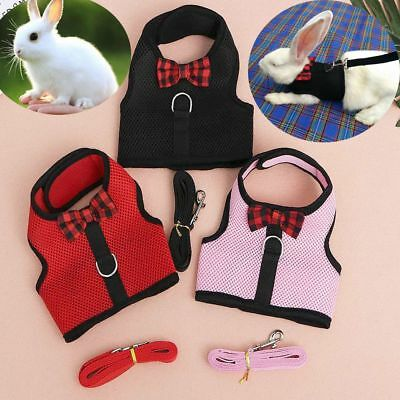 Durable Traction Clothes Chest Strap Pet Harness Leash Rabbit Lead Wire Rope