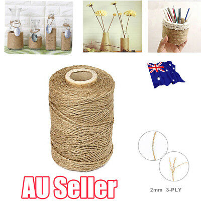 3Ply 100m Natural Brown Soft Jute Rope Twine Sisal String For Art Gift Bottle EA