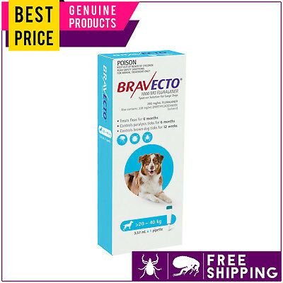 Bravecto Spot On for Large Dogs 20 to 40 Kg Blue 1 Dose Tick Flea Control