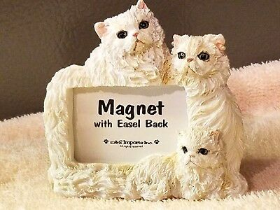 Persian Cat MAGNET/ EASEL BACK Photo FRAME ,New