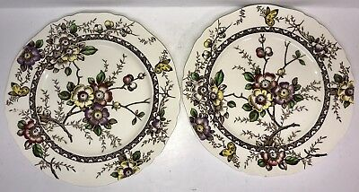 "Set Of 2 Alfred Meakin Medway Decor 10"" Plates"