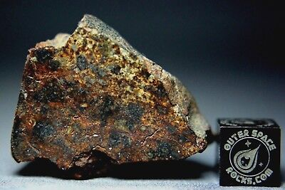 NWA 7192 LL4 Chondrite Meteorite 29 grams with nice colors and low metal